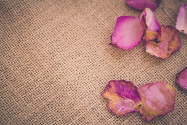 Withered Petal Background / Withered Petal / Withered Petal on Sack Background