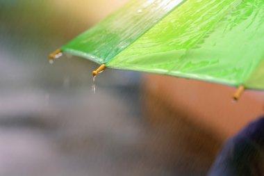 Rainny drop falling on umbrella.