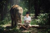 Kind liest Buch mit Elefant