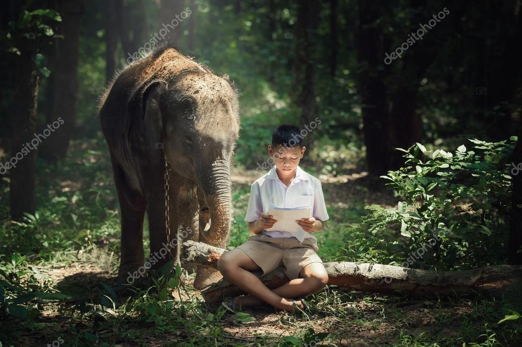 kid reading book with elephant