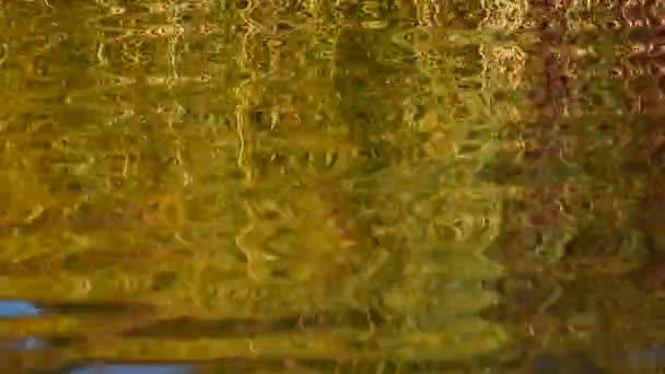 Futás hullámai cikk-cakk hatása a víz felszínén