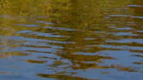 Rychlý běh barevné vlnky na vodní hladině