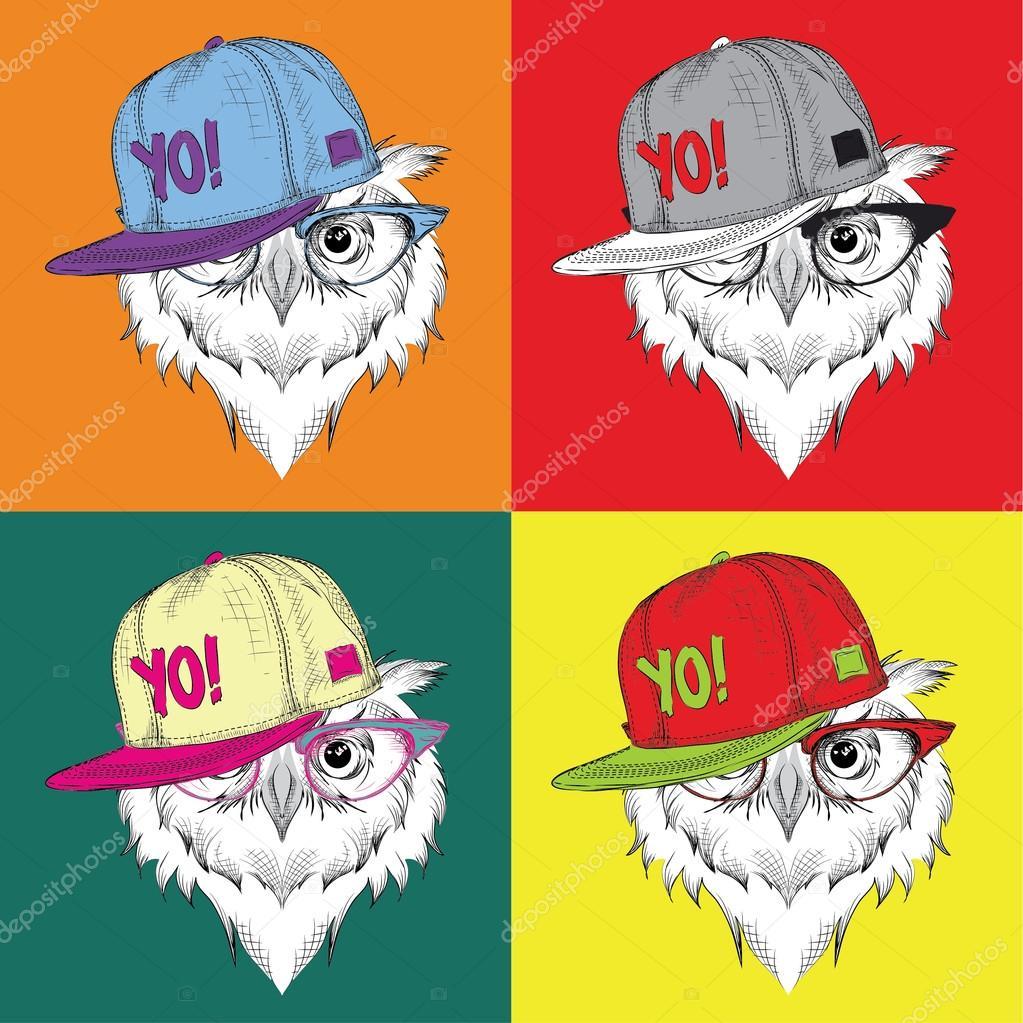 Imagen retrato de buho en una gorra de béisbol con gafas ...