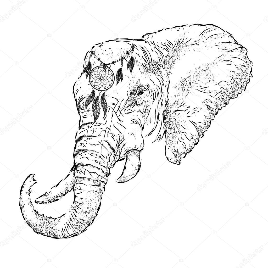 Draw Elephant Head Hand Draw Elephant Portrait Hand Draw