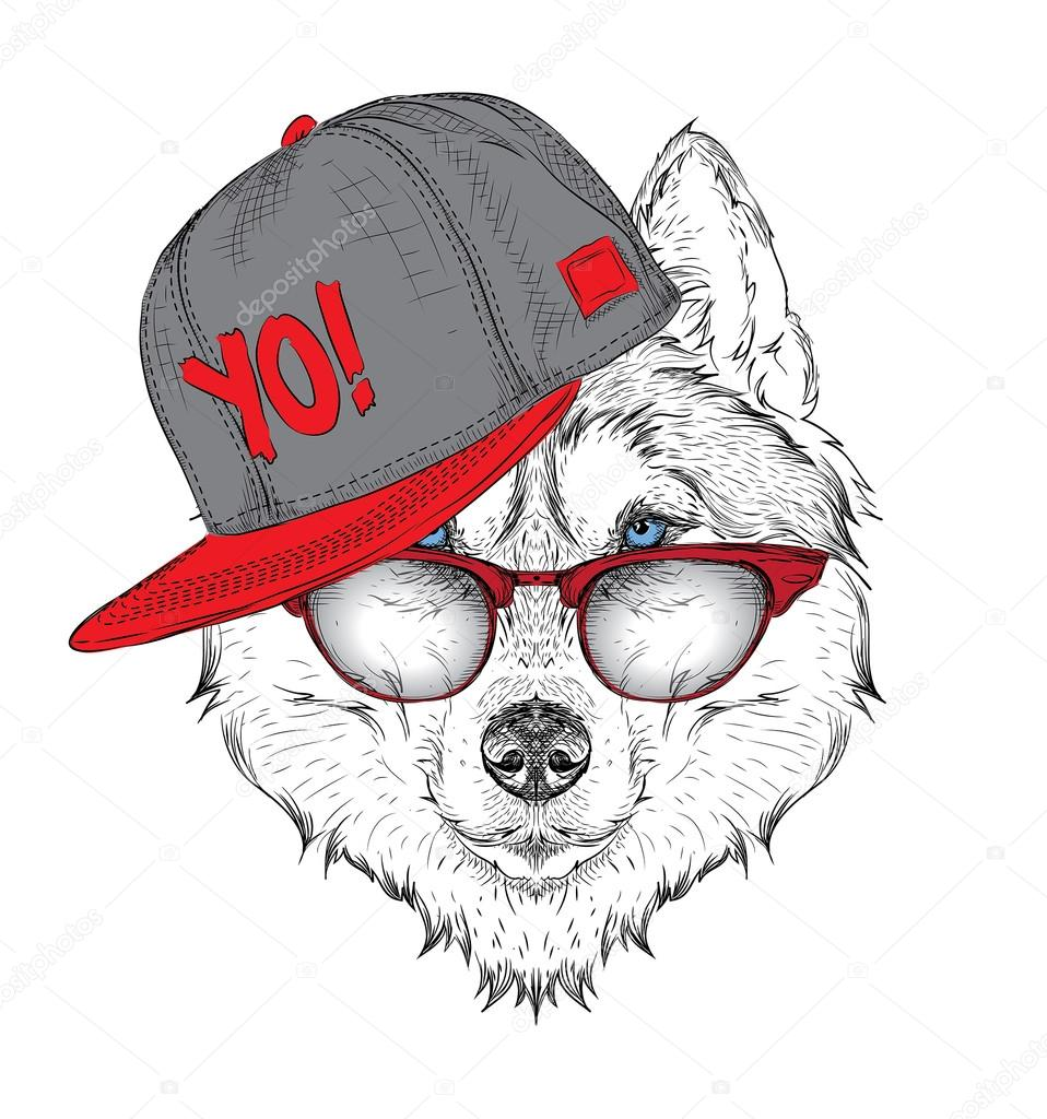 The poster with the image husky portrait in hip-hop hat. Vector illustration.