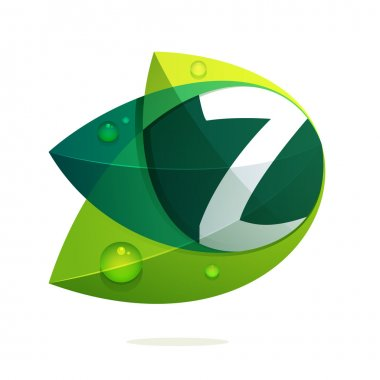 Z letter with leaves and drops