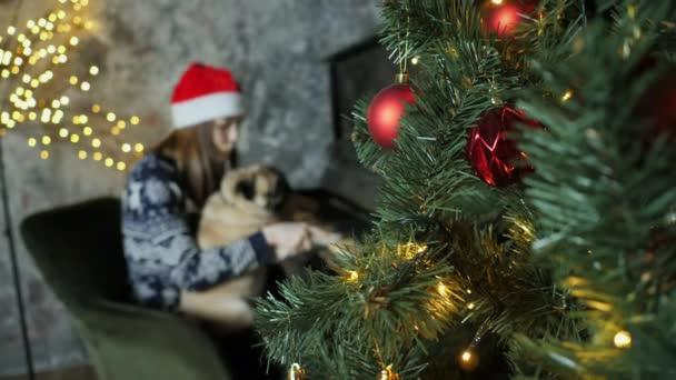 Tini lány játszik egy karácsonyi dalt a zongorán együtt egy vicces mopsz kutya, újév hangulat