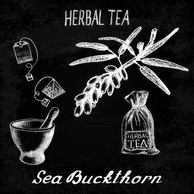 Sea buckthorn herbal tea. Chalk board set of vector elements