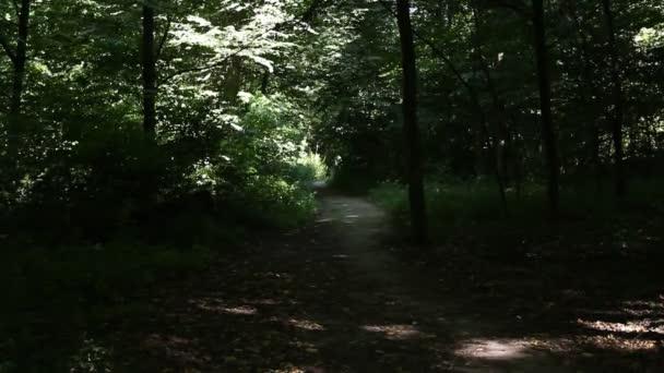 Mladý muž na koni na kole v lese