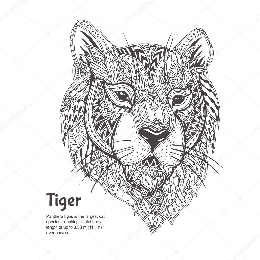 handgetekende tijger stockvector 169 moskoviya 115999138
