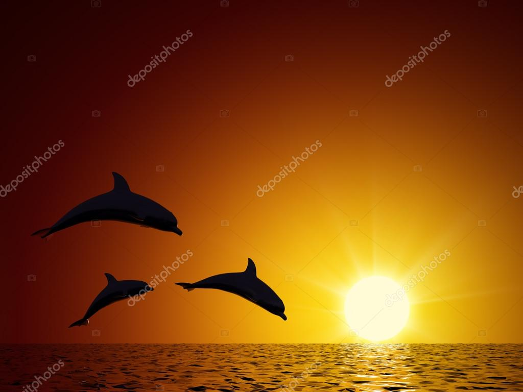Three dolphins swimming in the ocean