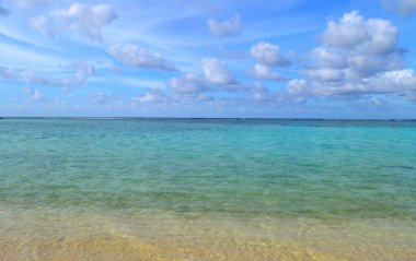 Tropical Island Beach and Ocean