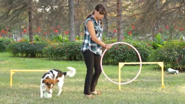 A Dog Jumps Through A Ring.