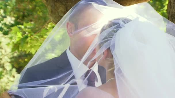 Romantic Kissing Under The Veil Of The Bride.