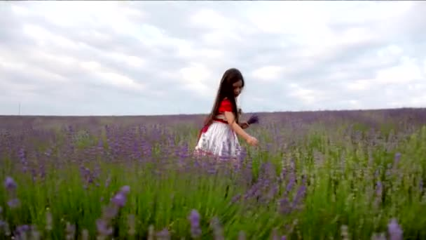 Girl Collects Lavender