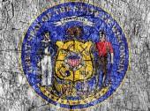Zášť kámen malované nás Wisconsin těsnění vlajky