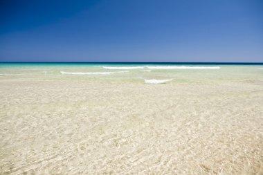 Beautiful seascape in Fuerteventura