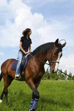 A girl on a horse, horse-riding for beginners