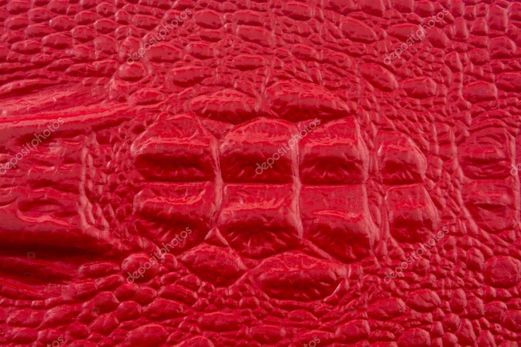 Cuero de cocodrilo rojo con cabeza de cocodrilo — Fotos de Stock ...