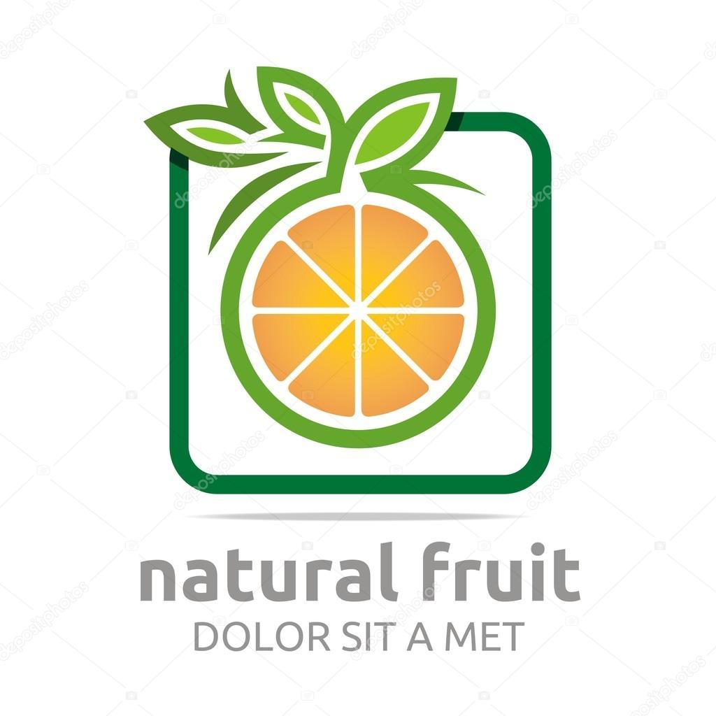 Logo natural fruit orange fresh lime leaves design vector