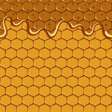 Seamless pattern of the honey and honeycomb. Vector