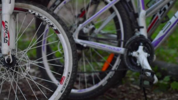 Jízdní kola záběr v lese