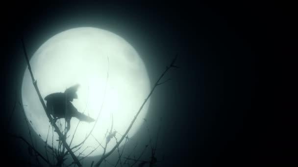 Sziluettjét madár, mint a Hold