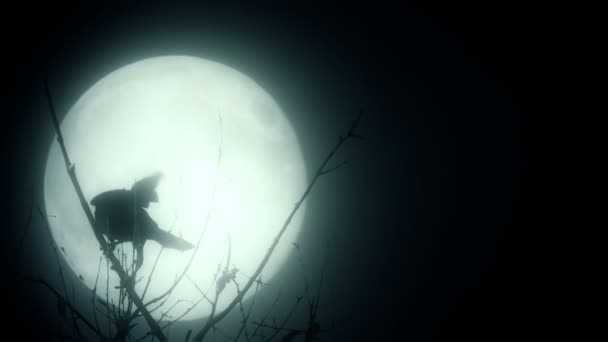 Silhouette of bird over the moon