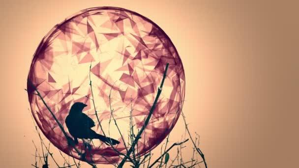 Raven und animierte Designelemente