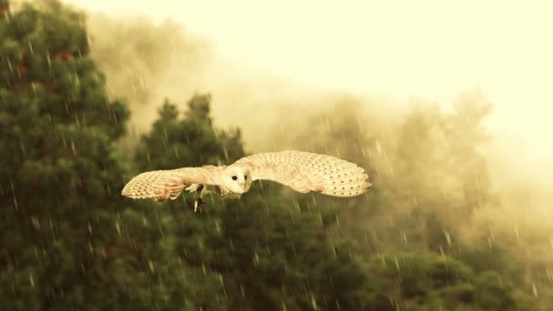 A majestic owl flies through a rain storm