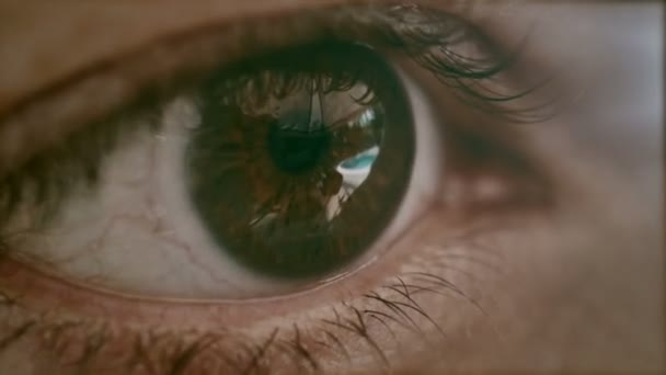 ženské oko makro