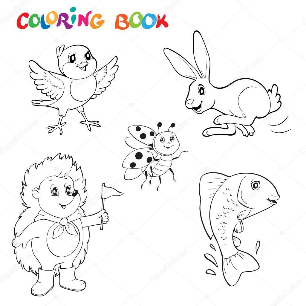 Colección en blanco y negro línea arte dibujos animales, se puede ...