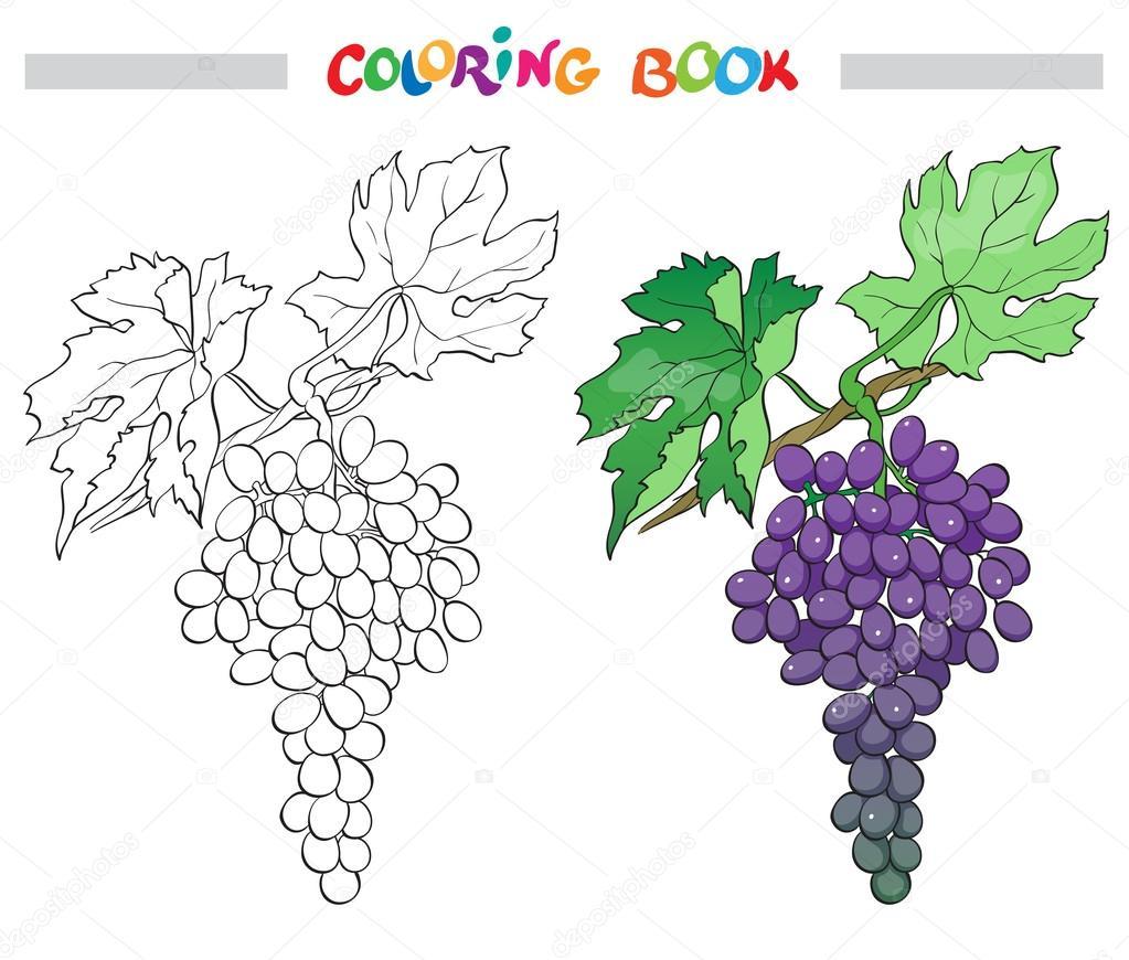 Siyah Ve Beyaz Vektör Karikatür çizim Boyama Kitabı Için üzüm Demet