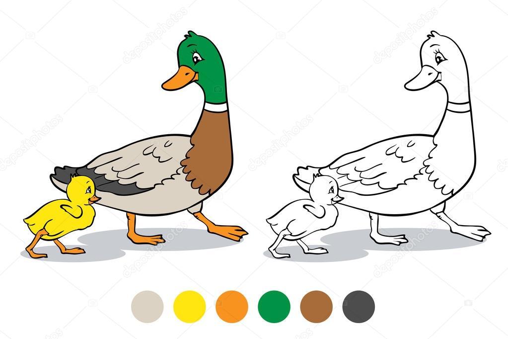 Patos Para Colorear Para Para Con Para Vector Stock Sin: Página Para Colorear. Patito Y Madre Pato