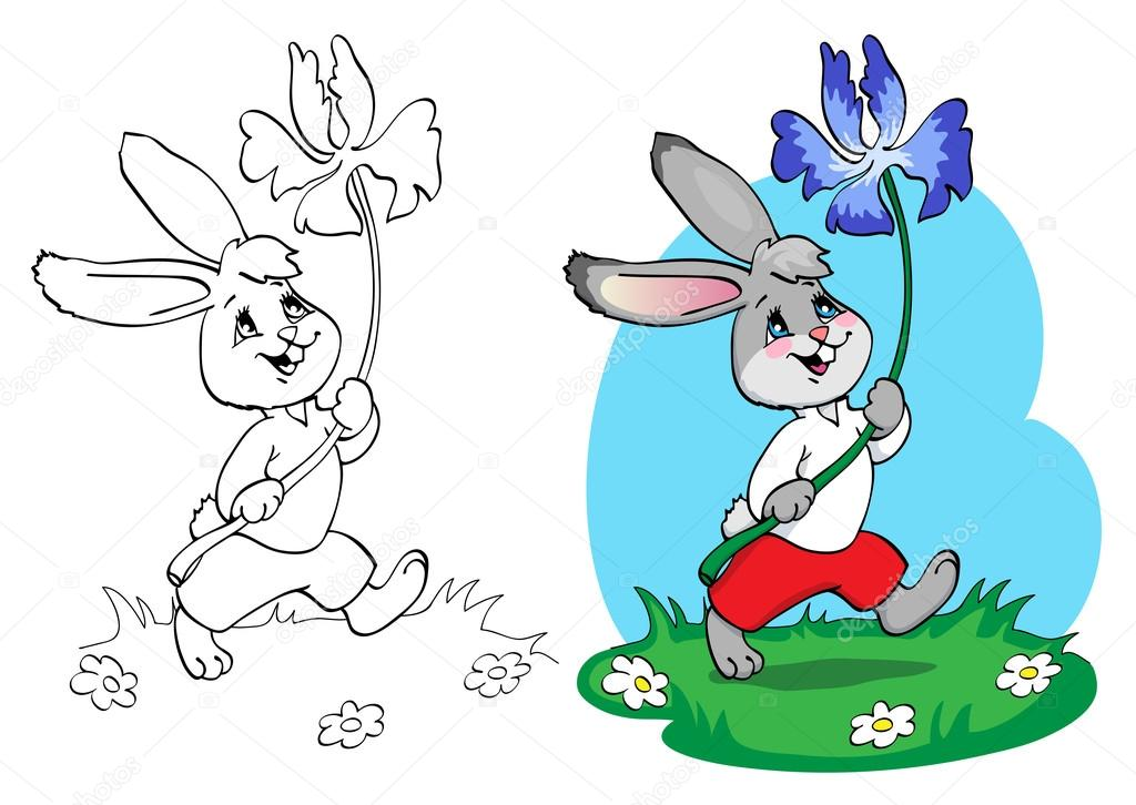 Libro para colorear o página. Conejo en shorts rojos y camiseta ...