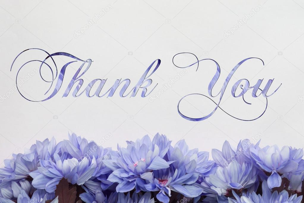thank you  flowers decoration  floral background and