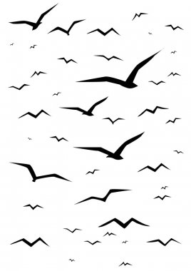 Simple black seagull silhouettes