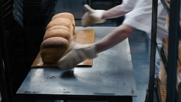 kenyér sütőipari gyári élelmiszertermelés a friss termékek, liszt, tészta, kenyér