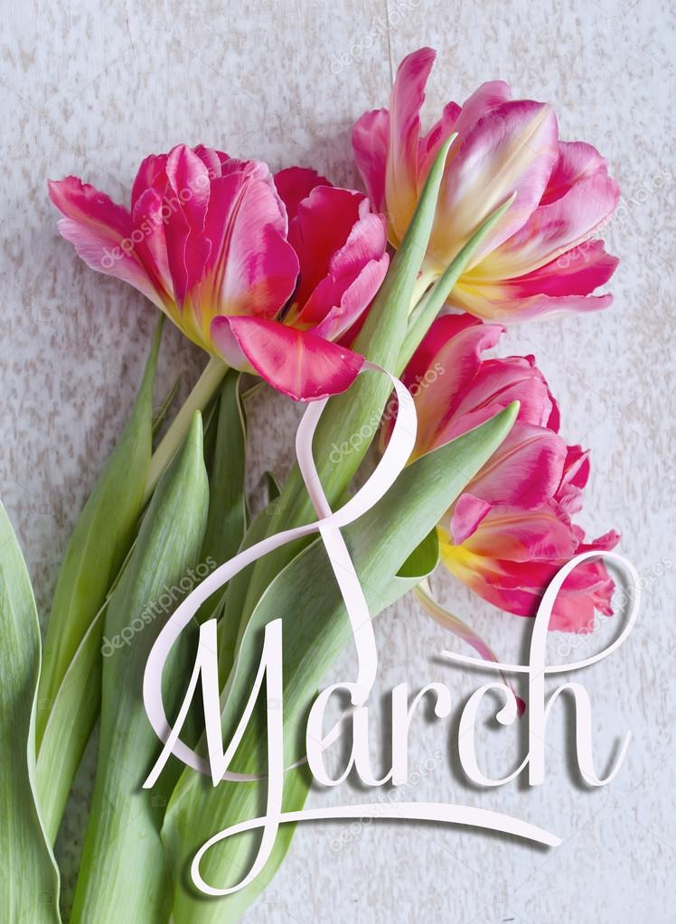 8 March, International Women's Day greeting card. White figure eight and a bouquet of three red tulips.