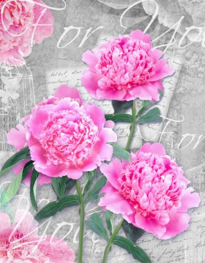 Postcard flower. Congratulations card with beautiful peonies on a grunge background and text for you.