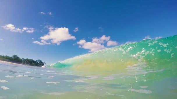 Surf vlna
