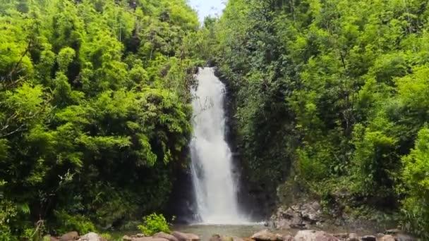 Bambusový lesní vodopád pomalu odhalující pánev. Nádherná svěží planeta přírodní koncepce cestování.