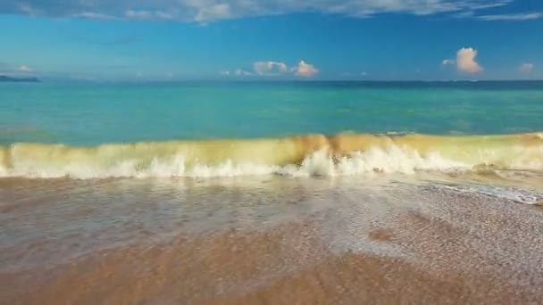 Slow Smooth Steadicam Motion Revealing White Sandy Beach. Ocean Scenic Landscape. Waves Rolling and Crashing.