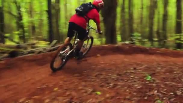 Mountain Biking Forest Trail. Young Fit Man Rides Mountain Bike. Outdoor Active Summer Lifestyle. Steadicam Shot.
