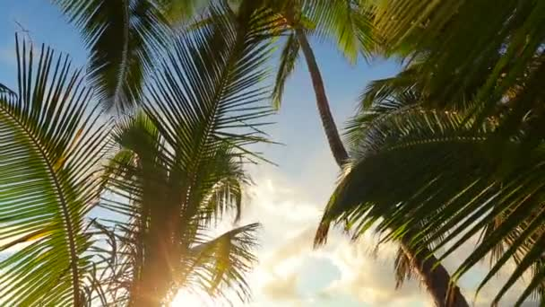 romantikus pár pihentető trópusi függőágy naplementekor