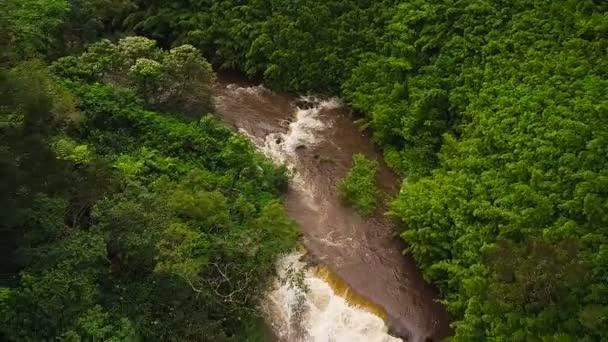 Vista aerea della cascata stupefacente potente in giungla tropicale
