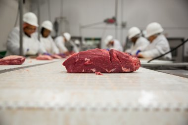 Meat handling safety procedure with workers in white suits helmets and gloves