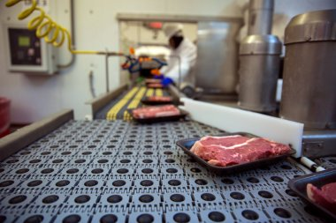 Conveyer belt packing and shipping meat at factory plant