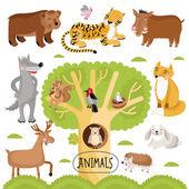 Velká sada zvířat