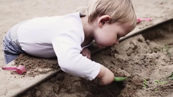 Adorable little boy on playground at sandbox. Sunny day. Toys. Child. Walking